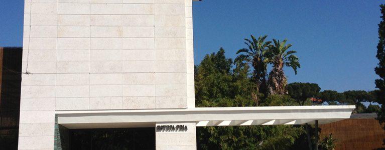 Execução de Vedações e Reabilitação da Estufa Fria de Lisboa 3